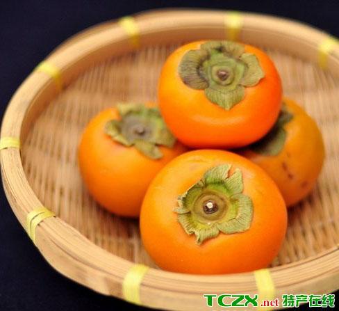 盘山磨盘柿