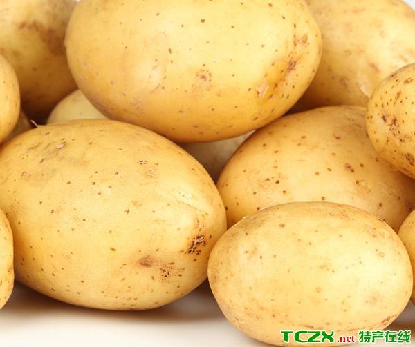 汾西土豆(马铃薯)