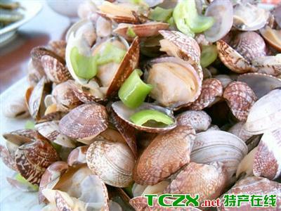 清水煮杂色蛤