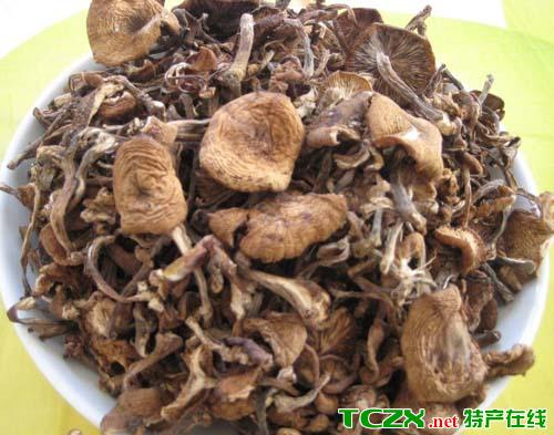 南岔野生榛蘑