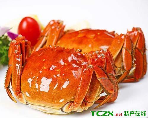 黄浦江大闸蟹