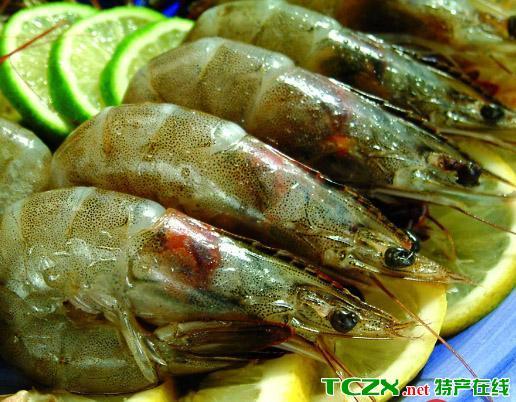 洪泽湖青虾