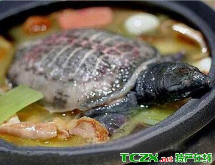 火腿炖甲鱼