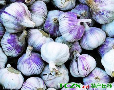 龙南紫皮大蒜