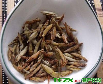 黔江老鹰茶