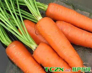 木龙观红萝卜