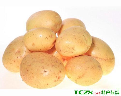 西吉马铃薯