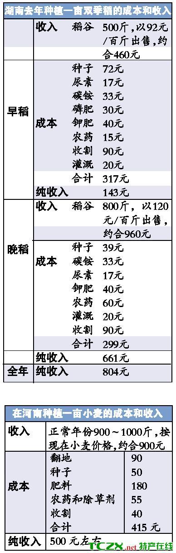 多重压力围困粮食生产 湖南部分地区水稻将减产