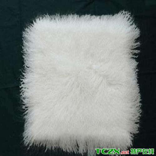 贺兰滩羊皮