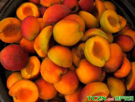 新疆巴旦杏