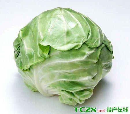罗文皂圆白菜