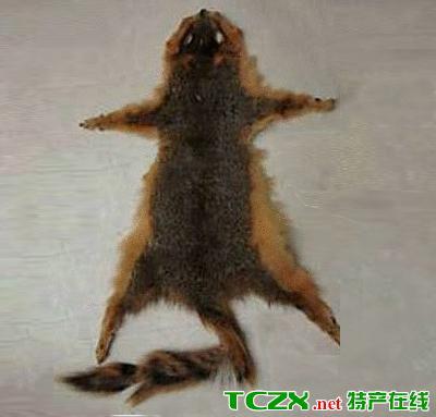 东陵灰鼠皮