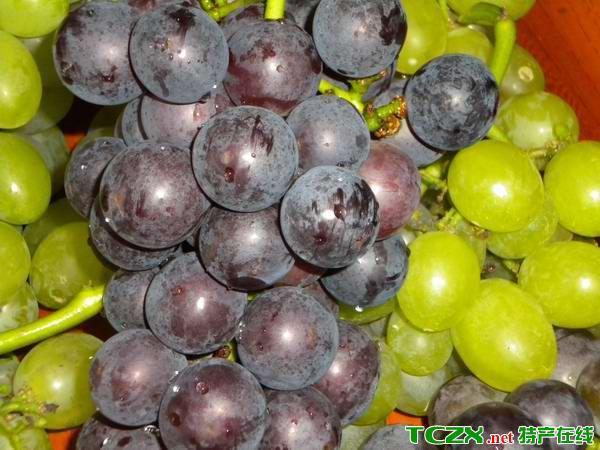 嘉定巨峰葡萄
