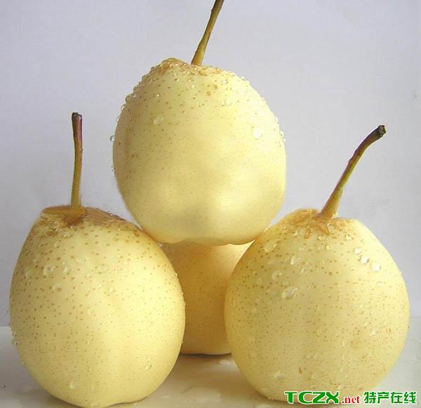 顺义砀山酥梨