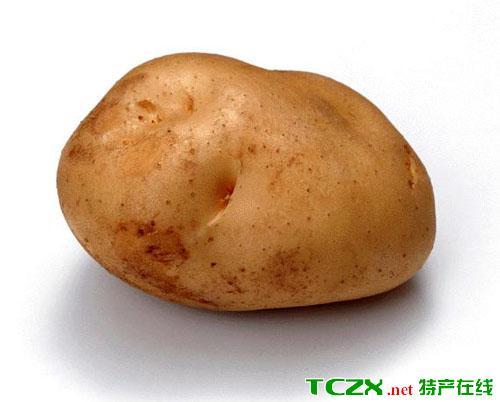 金铃牌马铃薯