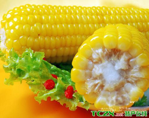 建新鲜食玉米