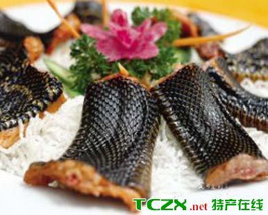 海珠全蛇宴