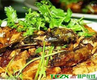 红尾巴鱼烧豆腐