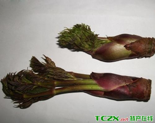 漾濞树头菜
