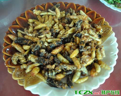 傣族虫类美食
